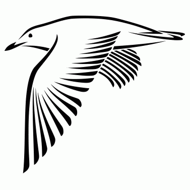 Tattoo design: Bird 2