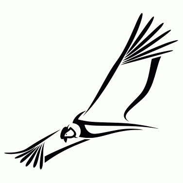 Tattoo design: Condor 1