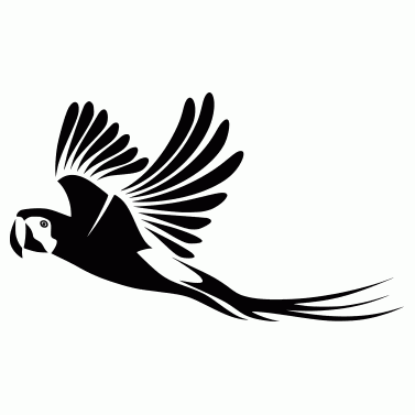 Tattoo design: Parrot 2